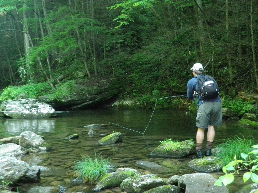 North carolina fishing guide for Fishing in asheville nc