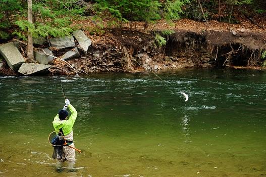 Pennsylvania fishing guide for Fishing trips in pa