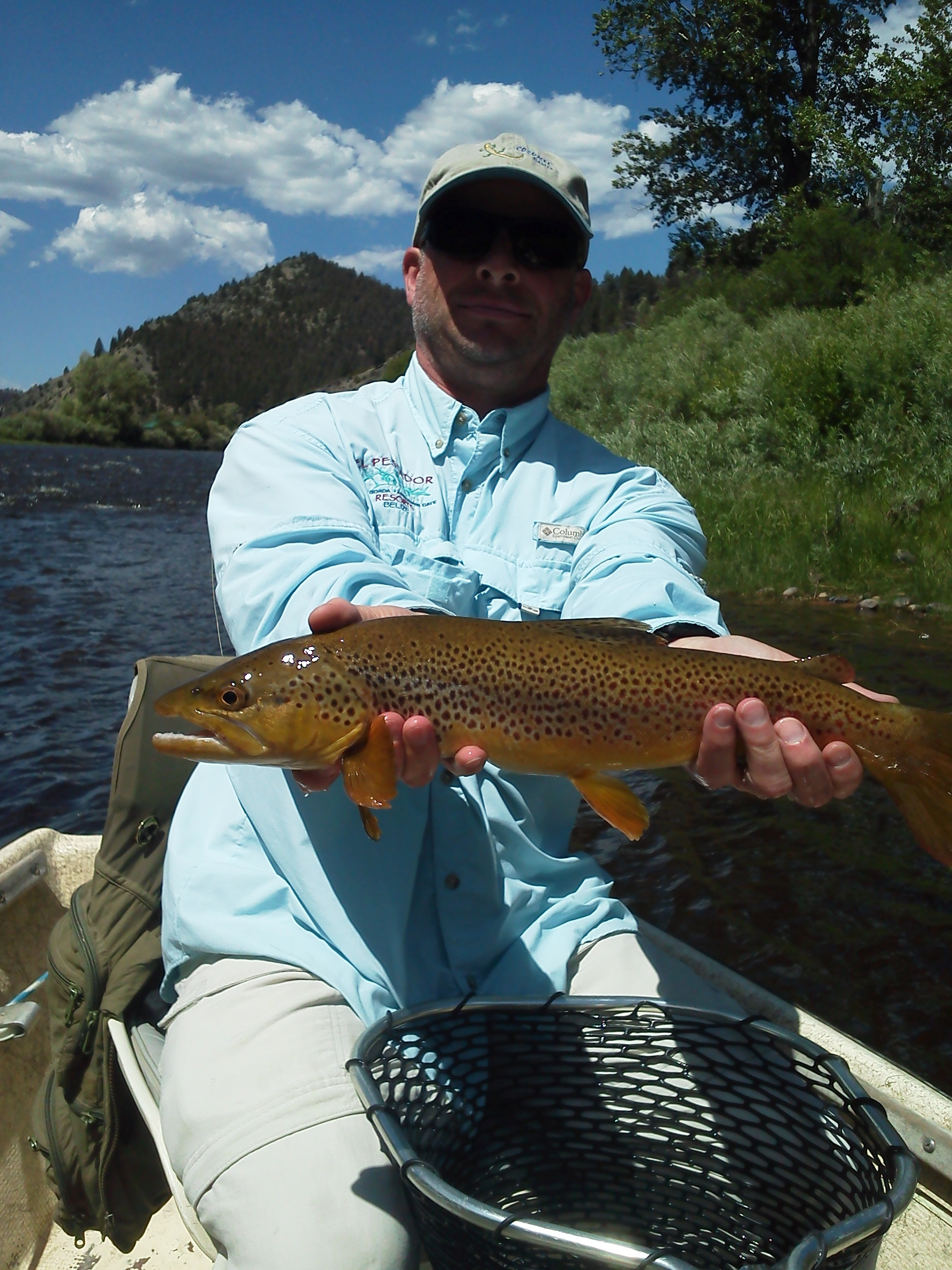 Blue skies and big browns!